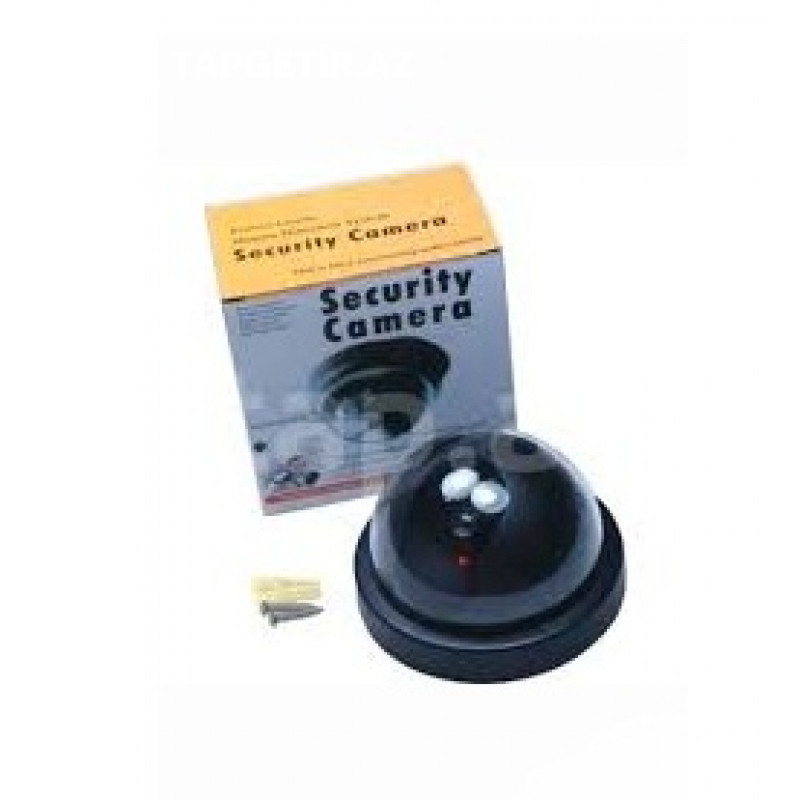 Saxta Dome Kamera